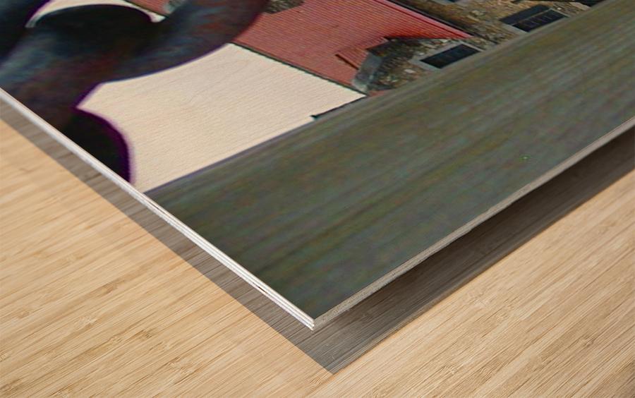 Ticondaroga Wood print