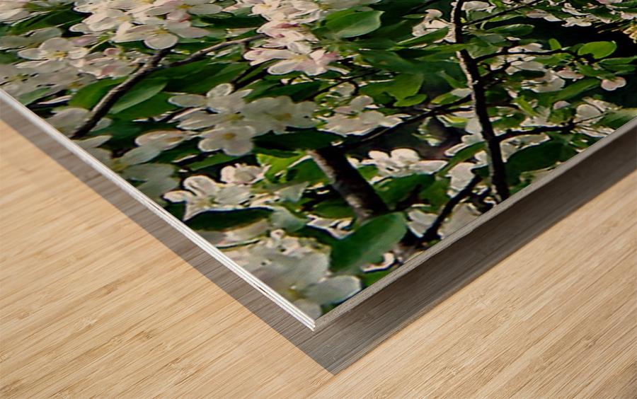 DazzleBlossoms Impression sur bois