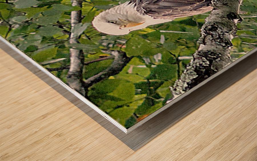 Watchful1 Wood print