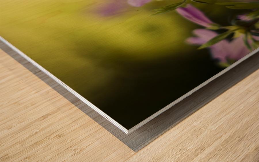 0239 Wood print