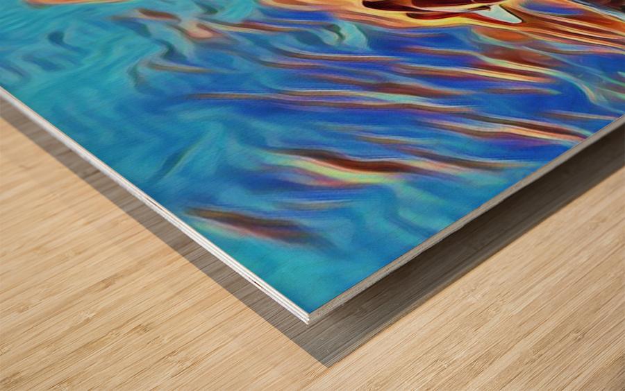 Swan Splash Wood print
