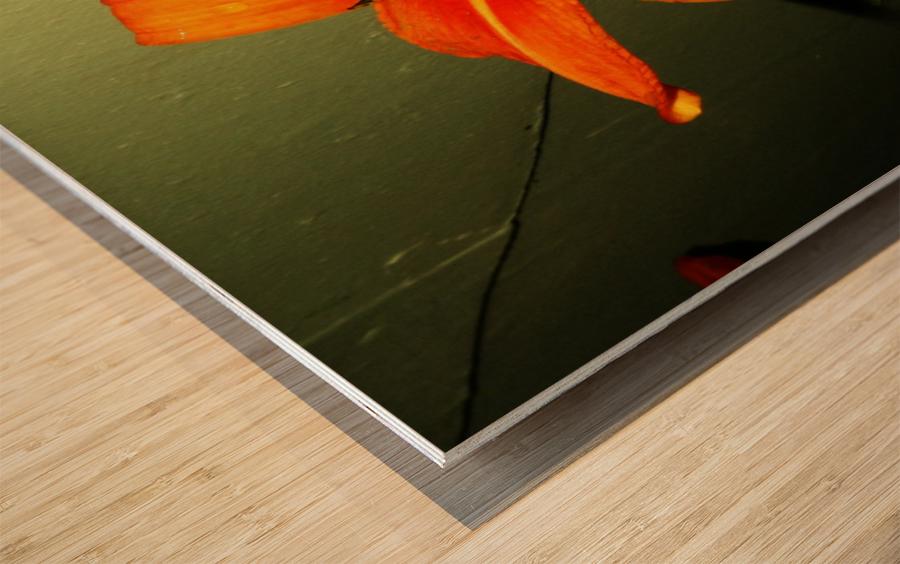 sofn-D014FA2F Wood print