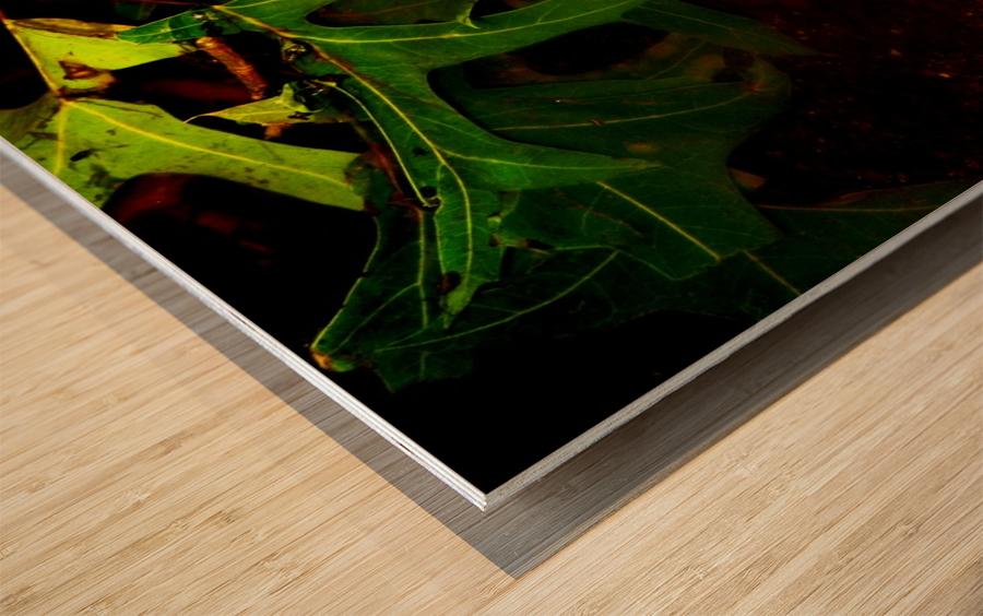 sofn-CA35DBE6 Wood print