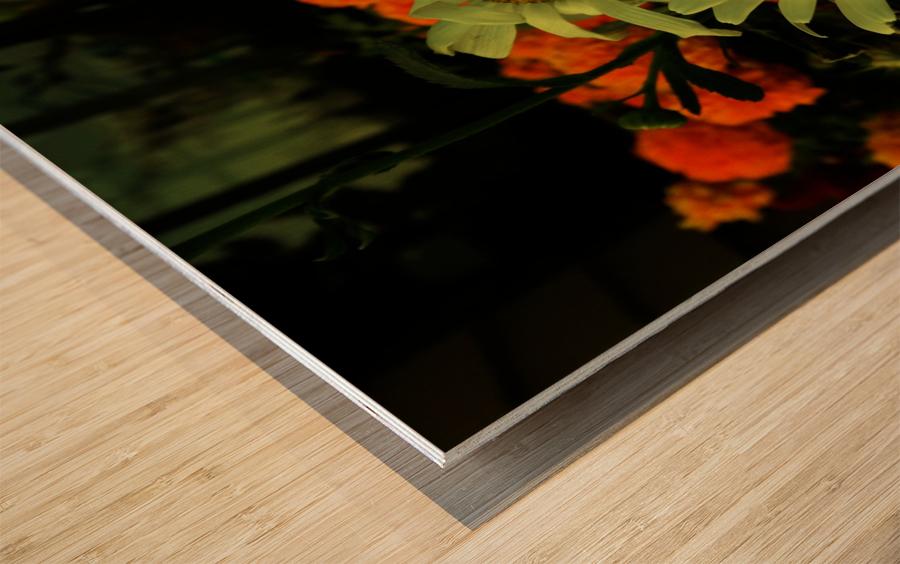 D (12) Wood print
