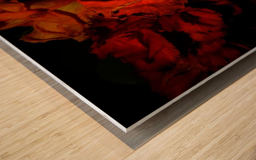 D (5) Wood print