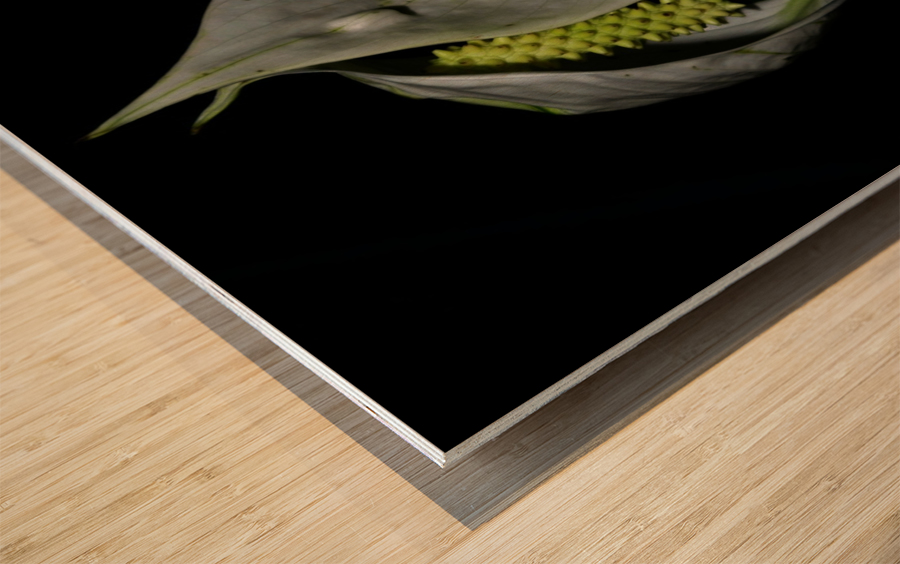 sofn-068EEE2A Wood print
