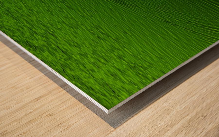 F (14) Wood print
