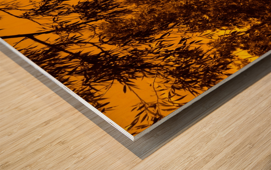 G (12) Wood print