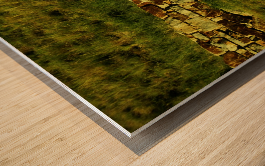 G (10) Wood print