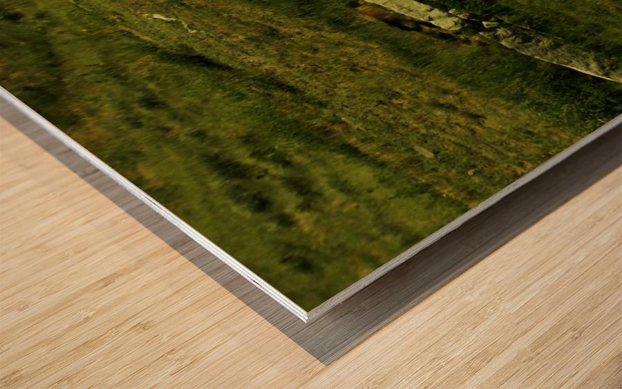 sofn-AB81F9D3 Wood print