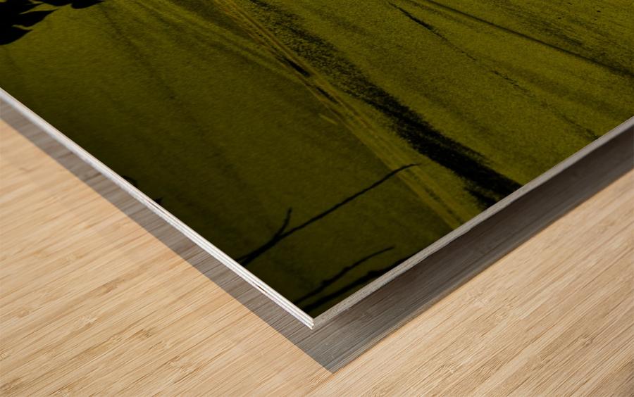 H (12) Impression sur bois