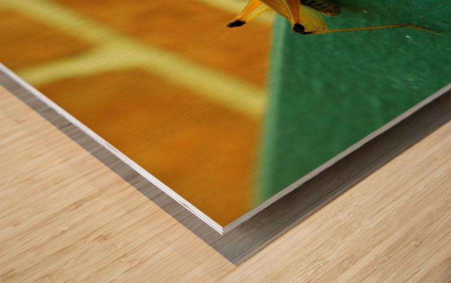 H (10) Wood print