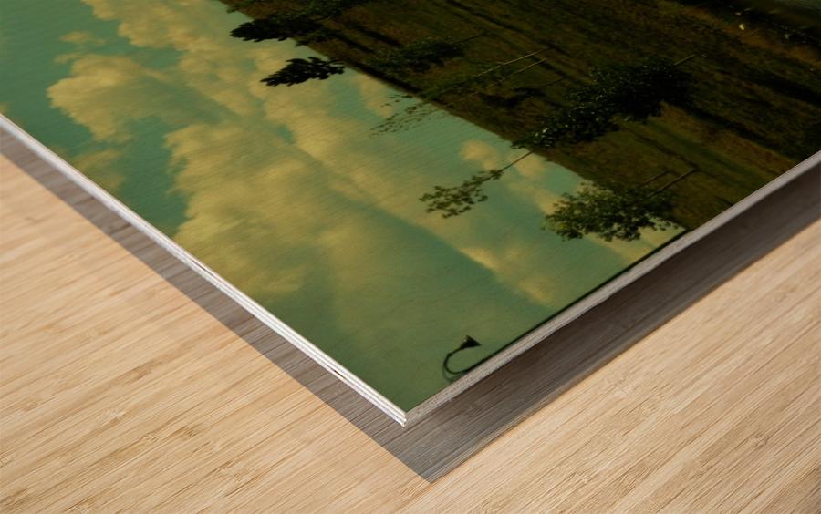 sofn-38AD1CF2 Wood print