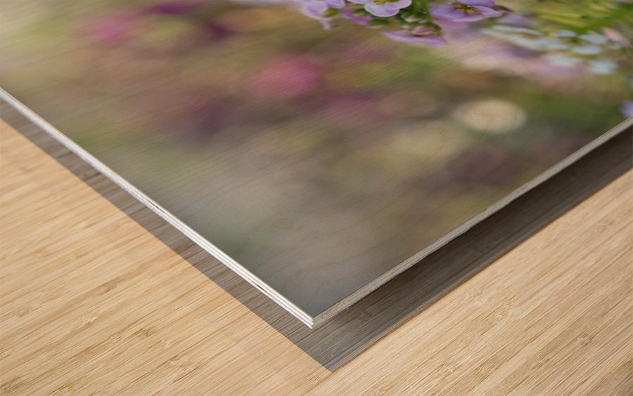 Small Purple Flowers Photograph Wood print