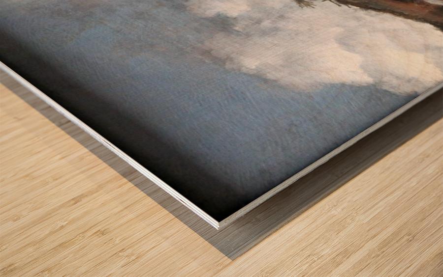 Wouwerman Winterlandschaft anagoria Wood print