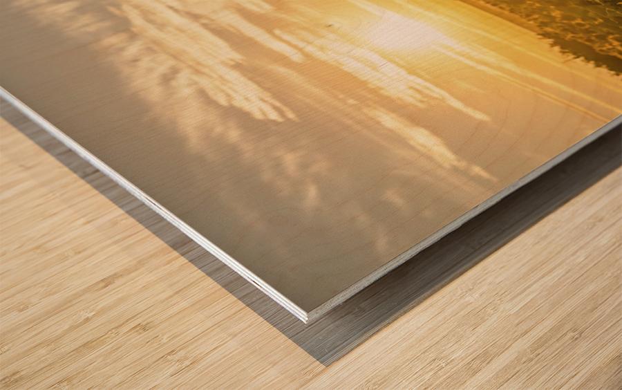 facing the sun Wood print