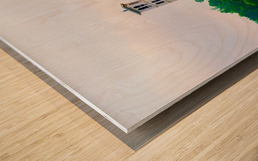 Furman University Wood print