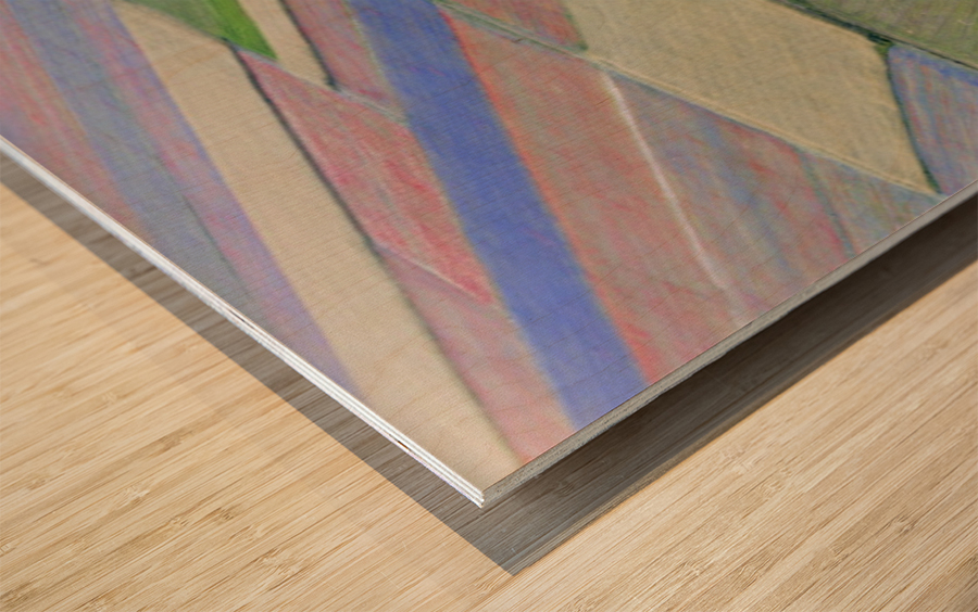 La fioritura di Castelluccio Wood print