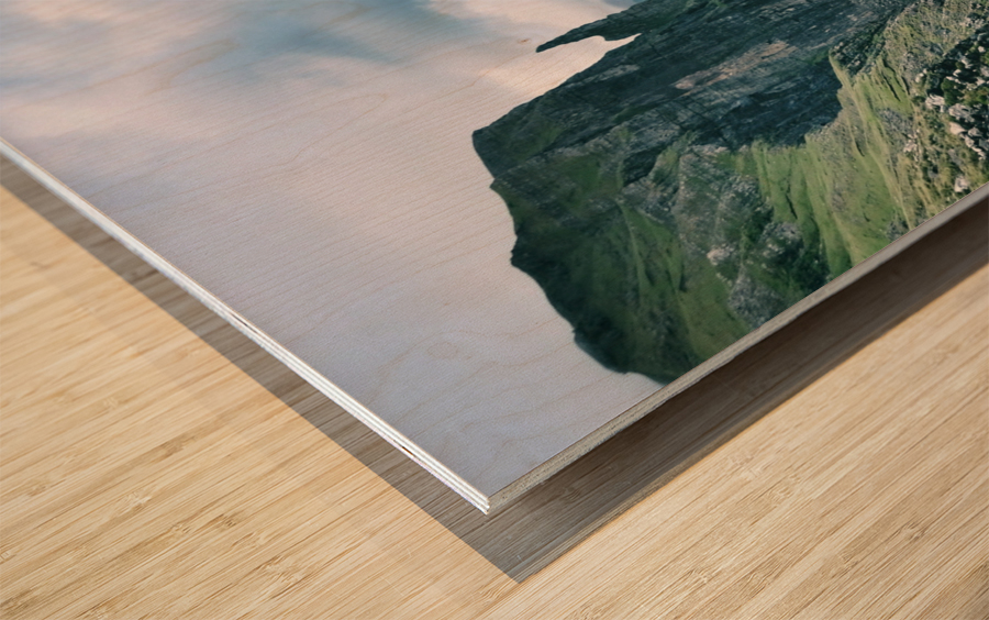 Trøllkonufingur Wood print
