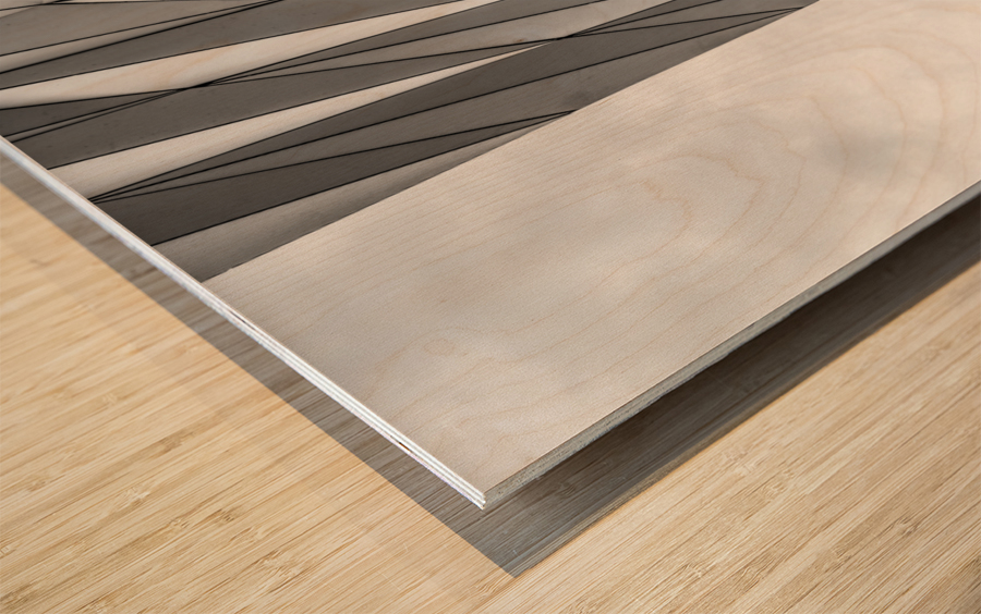 Musée des Confluences Impression sur bois
