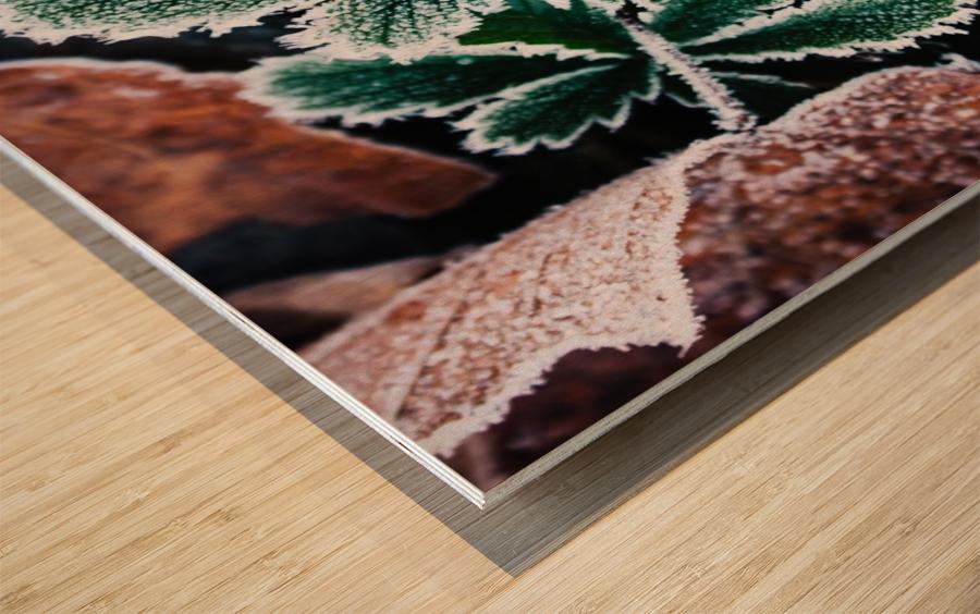 Feuilles Croquantes Impression sur bois