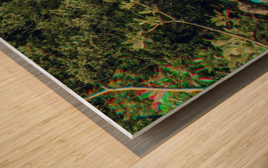 Glen Shiel River - Colorflow 3 Impression sur bois