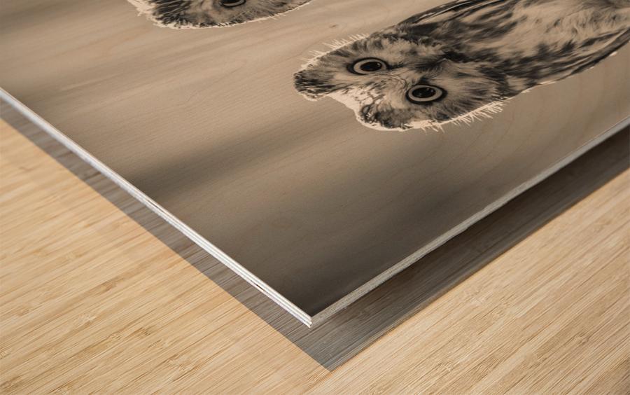 The Odd Couple - B&W Wood print