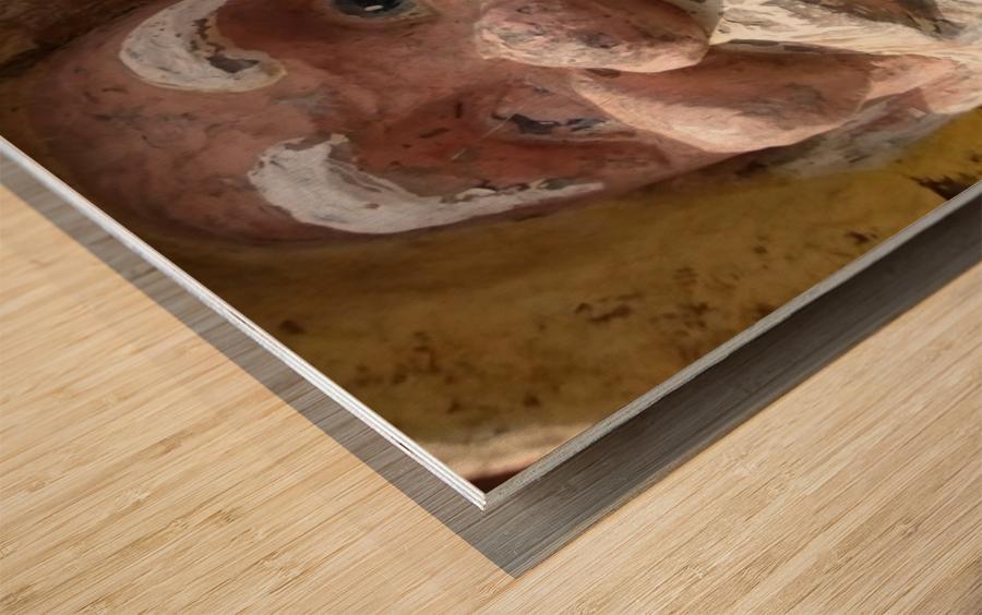 ahson qazi_self Portrait_artist_painter_calligrapher_Shades of divinity_Photographer 2 Wood print