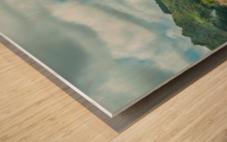 1 151 Wood print