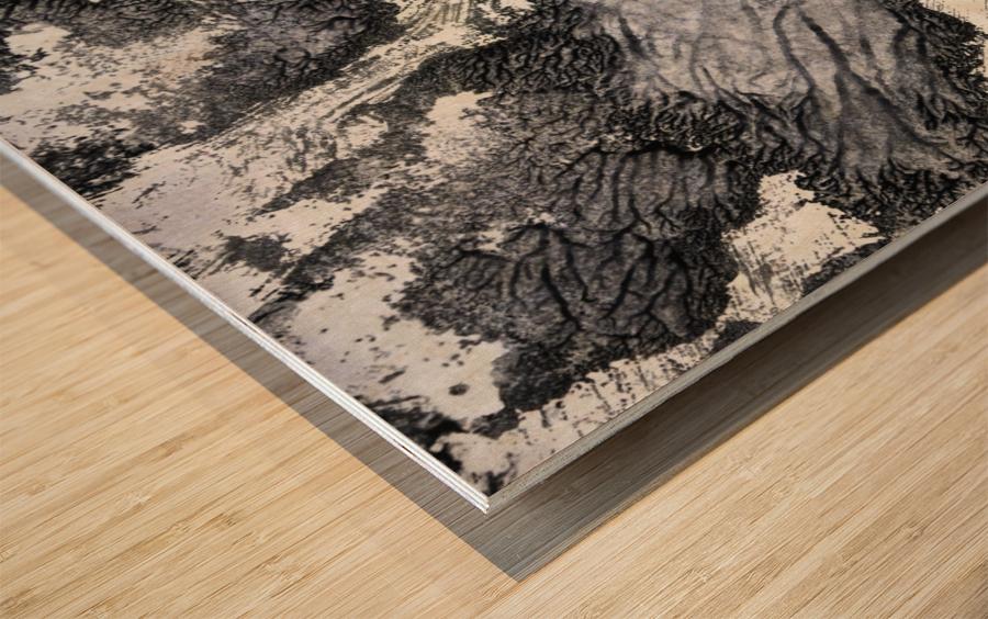 Print Art Photo Impression sur bois