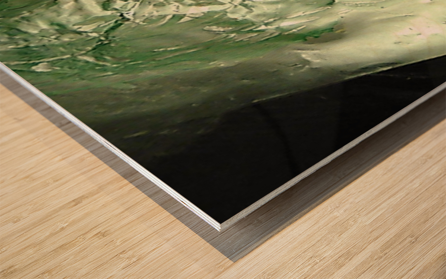 1539057273179 Impression sur bois