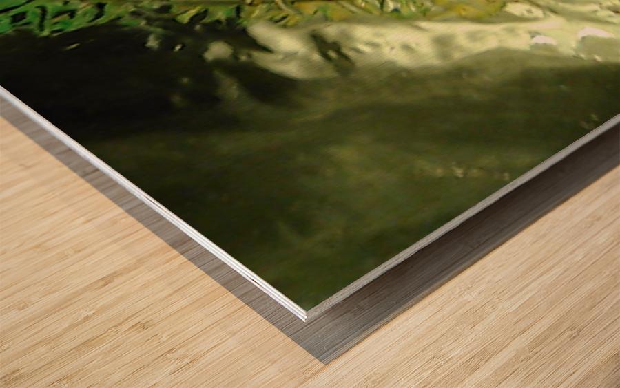 1539056797847 Wood print