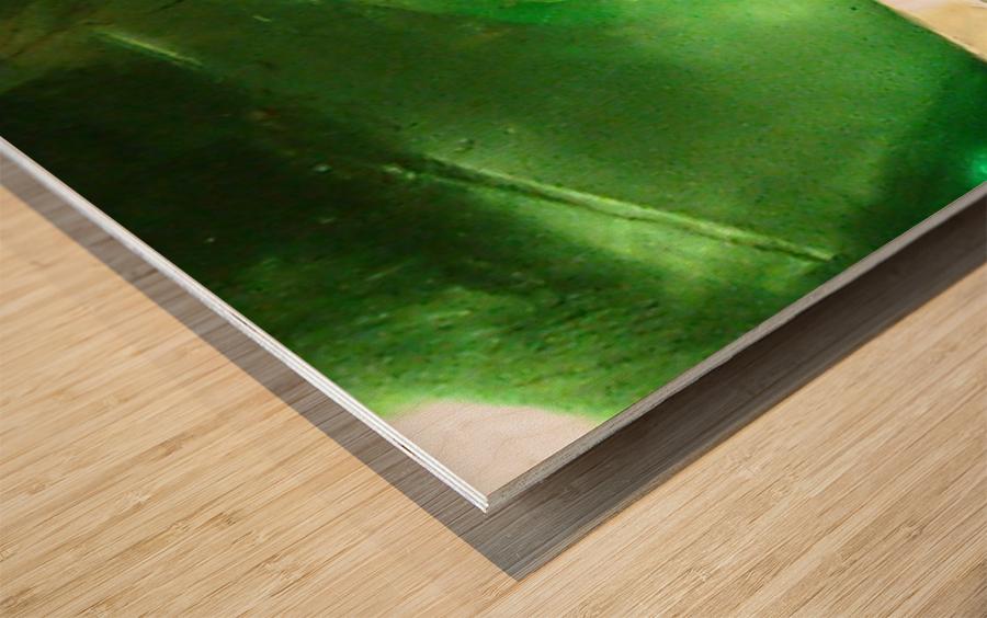1539065838548 Wood print
