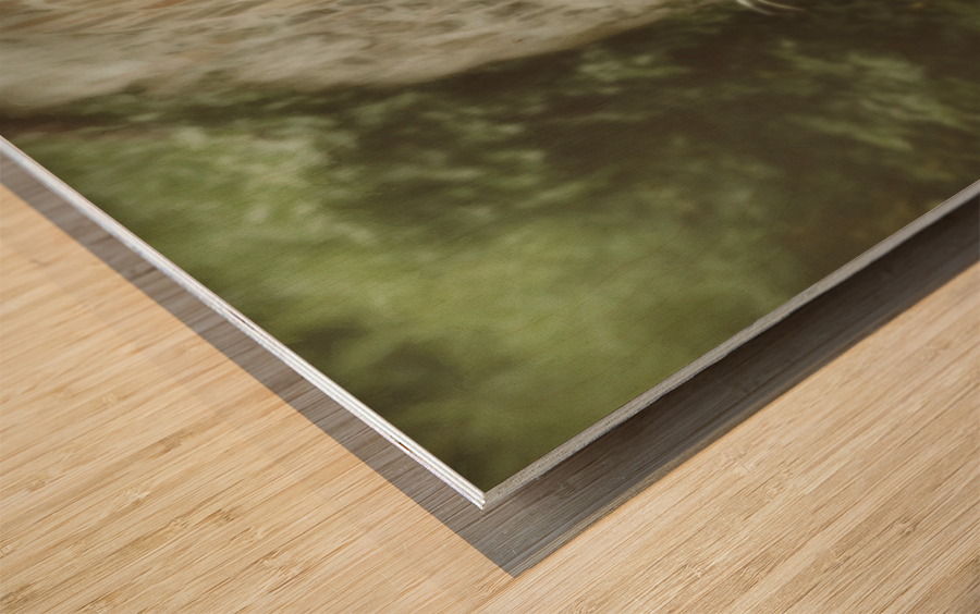 The wall game Wood print