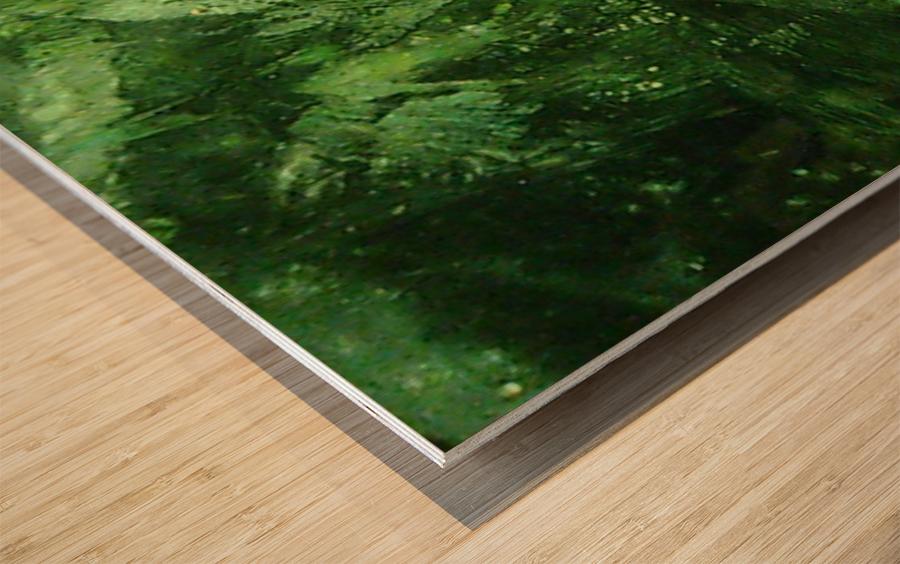 1539910326723 Wood print
