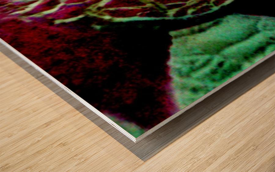 1540675361047 Wood print