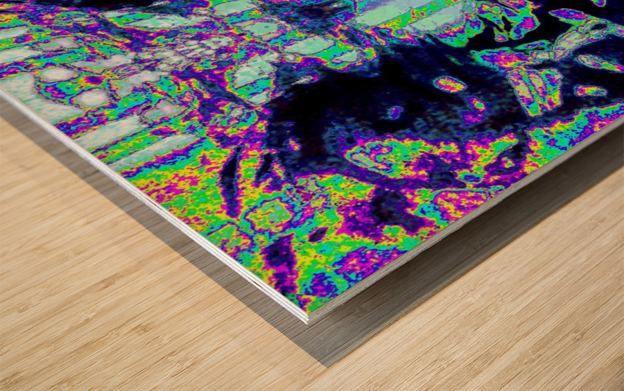 IMG_20181103_134349 Wood print