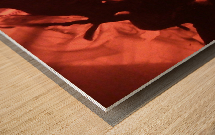 1541427995264 Wood print