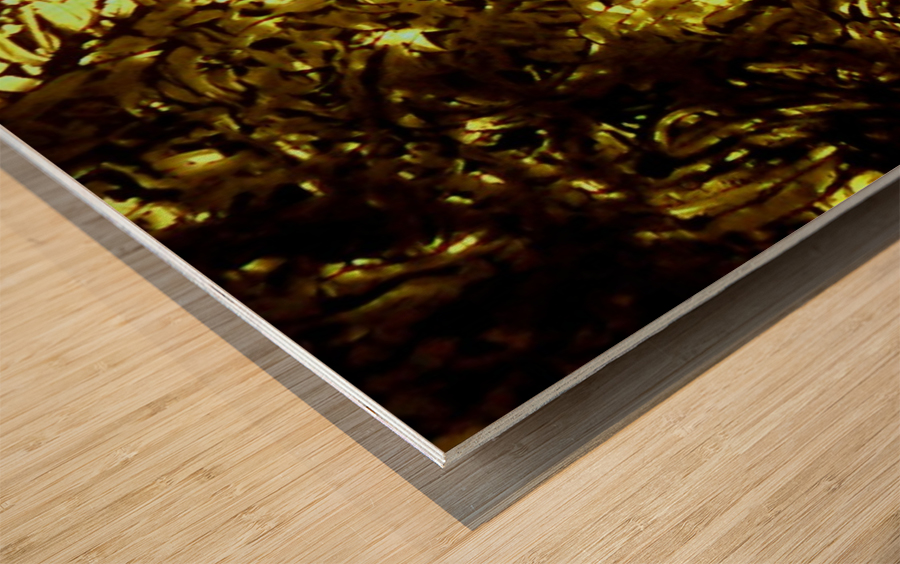 1541928232637 Wood print