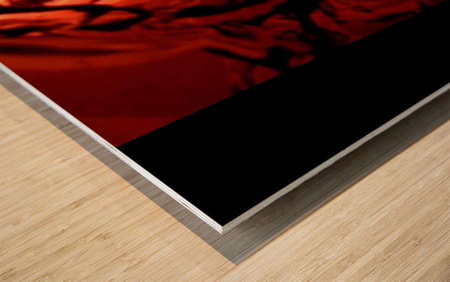 Screenshot_20181109 165040 Wood print
