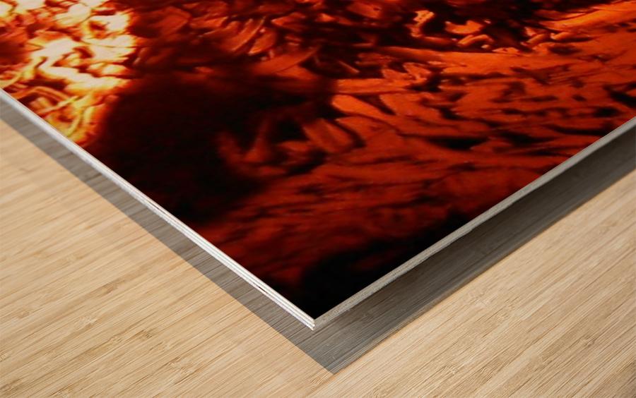 1542118867044_1542126232.54 Wood print