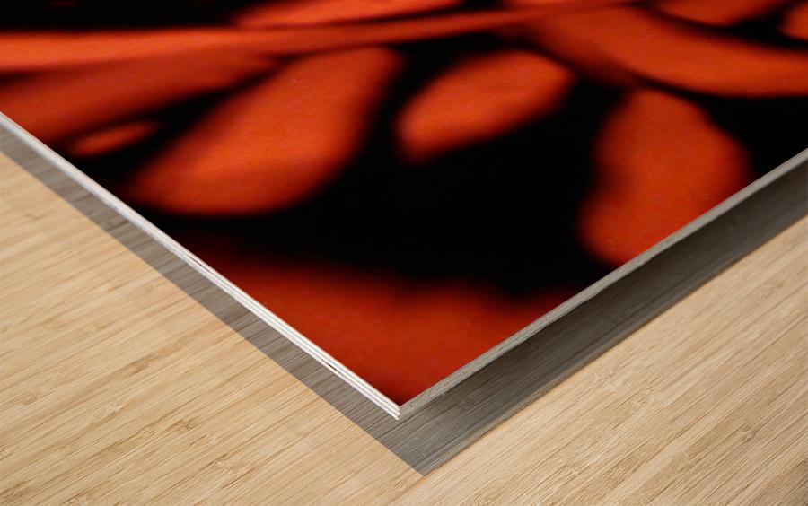 1542143674246_1542151713.53 Wood print