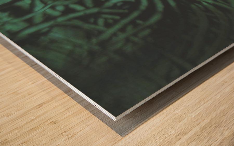 1542144133559_1542161559.8 Wood print