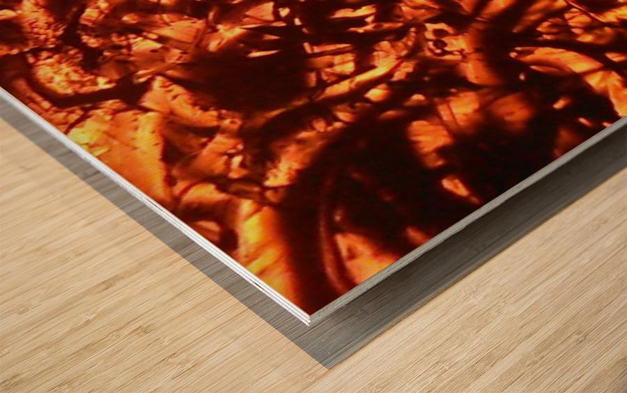 1542381772287_1542384424.21 Wood print