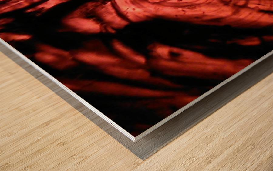 1542420328995 Wood print