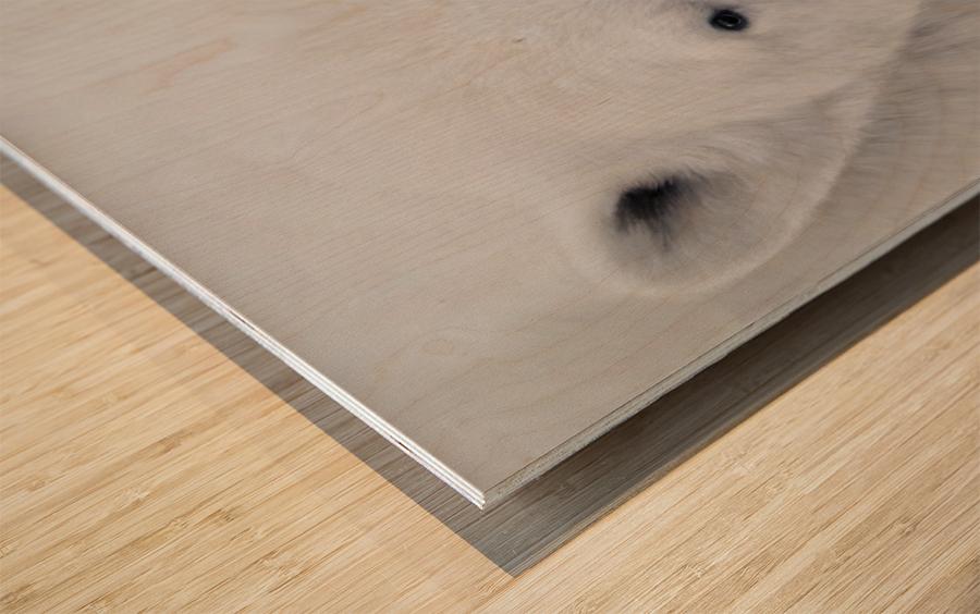 ALPHA Wood print