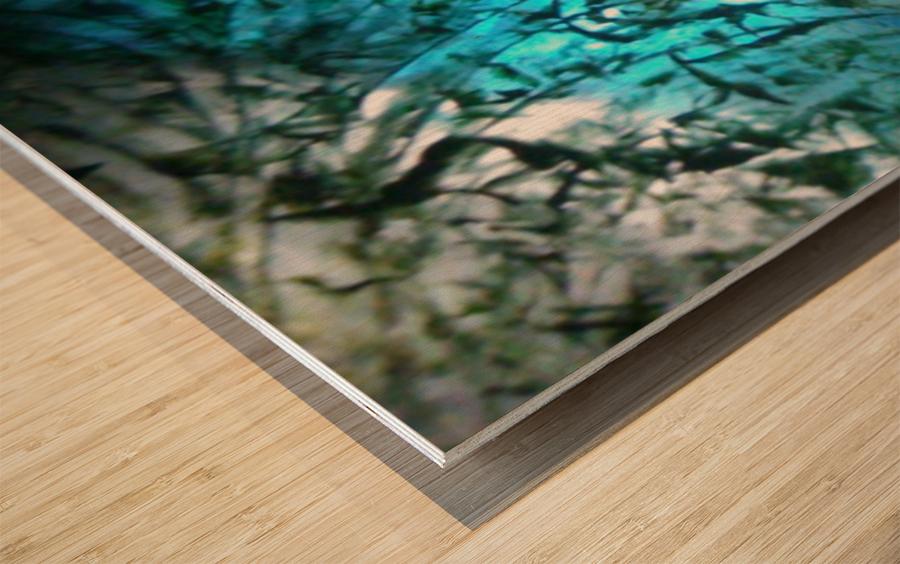 1545806571223 Wood print