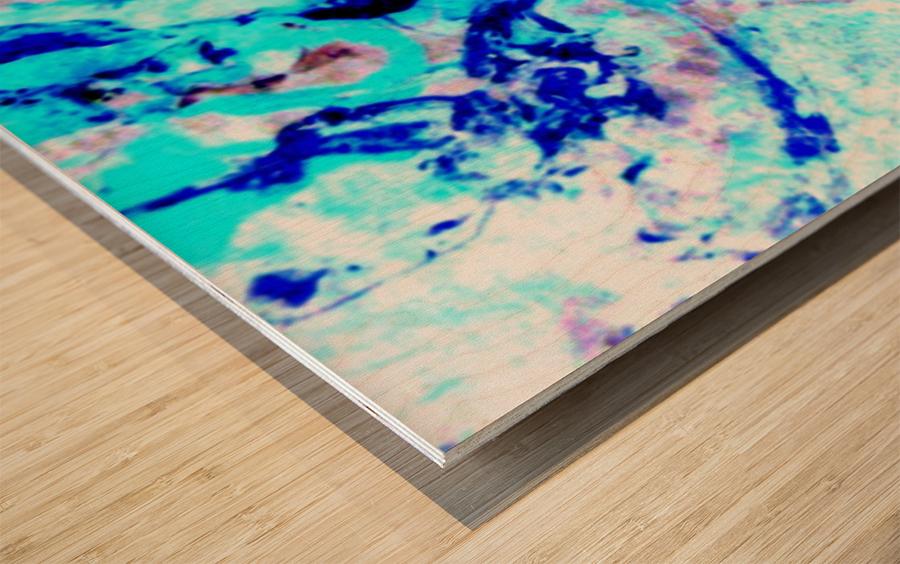 1546579087001 Wood print
