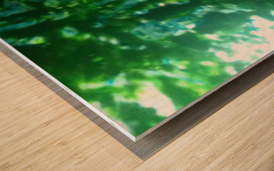 1547171131936 Wood print