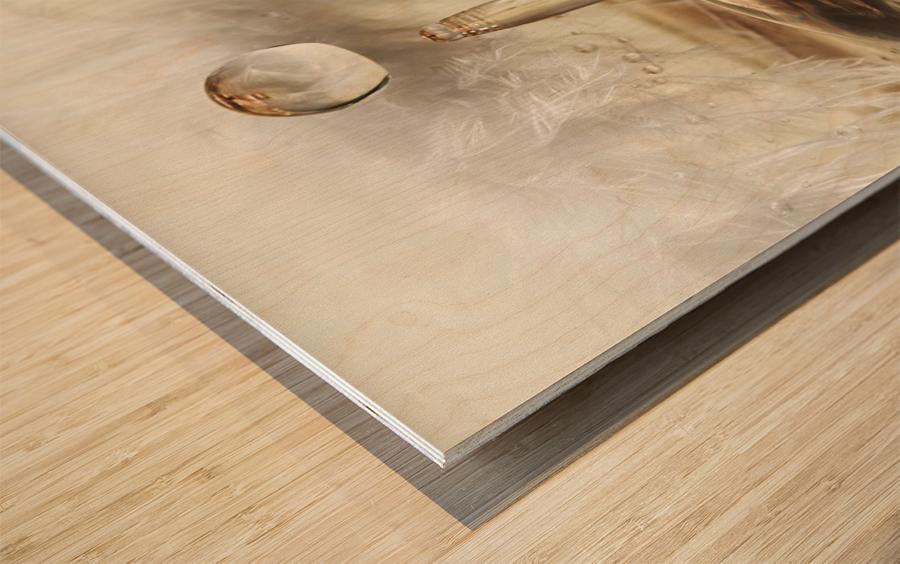 Golden featherdrops Wood print